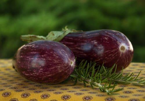 Assortiment de légumes et de viande